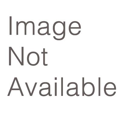 Cuda Studio Logo Blue 8x8